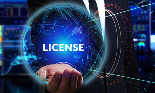 Company Activities and Licensing 500x 300 MORE services Page