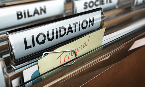 Liquidation And Deregistration Service 500x 300 advisory services Page
