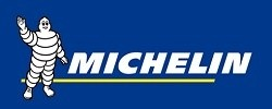 michelin logo 250100